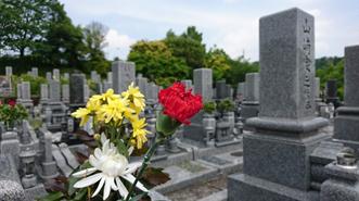 母の日参りカーネーション無料献花サービス